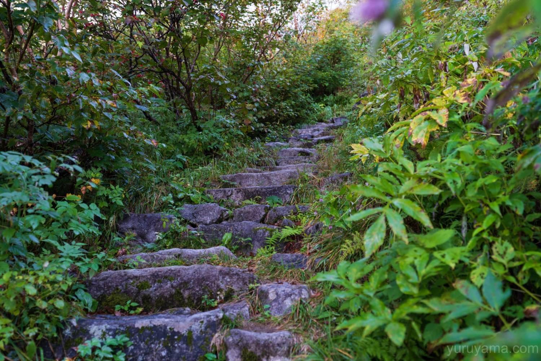 岳沢小屋へ続く登山道