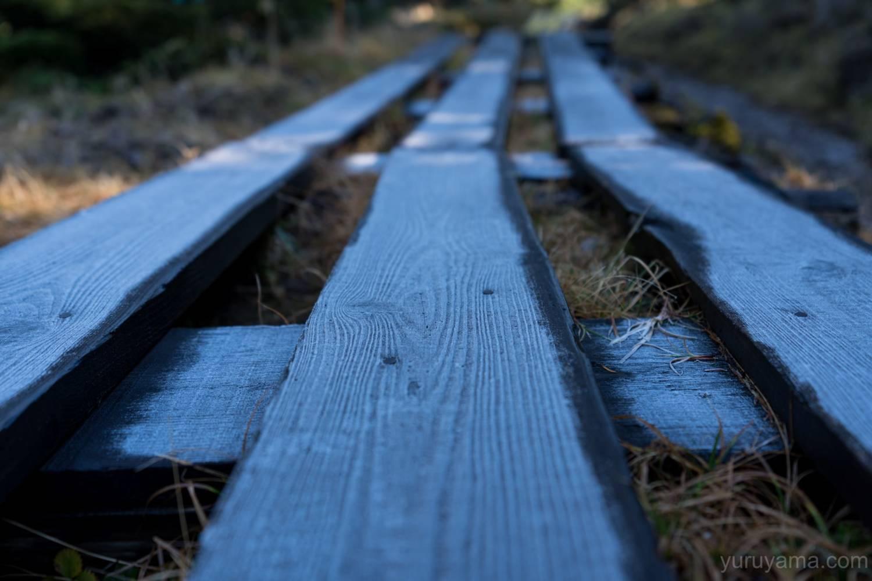 凍りついた木道