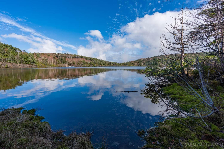 青空を反射する白駒池の画像