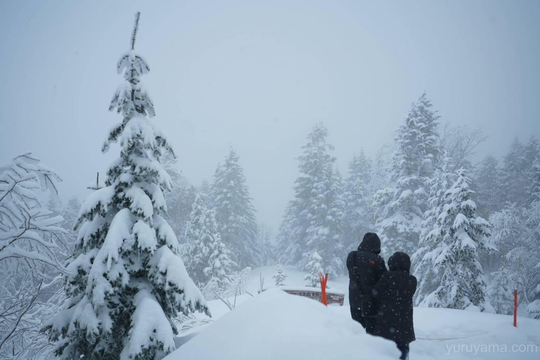 雪が降る新穂高ロープウェイの画像