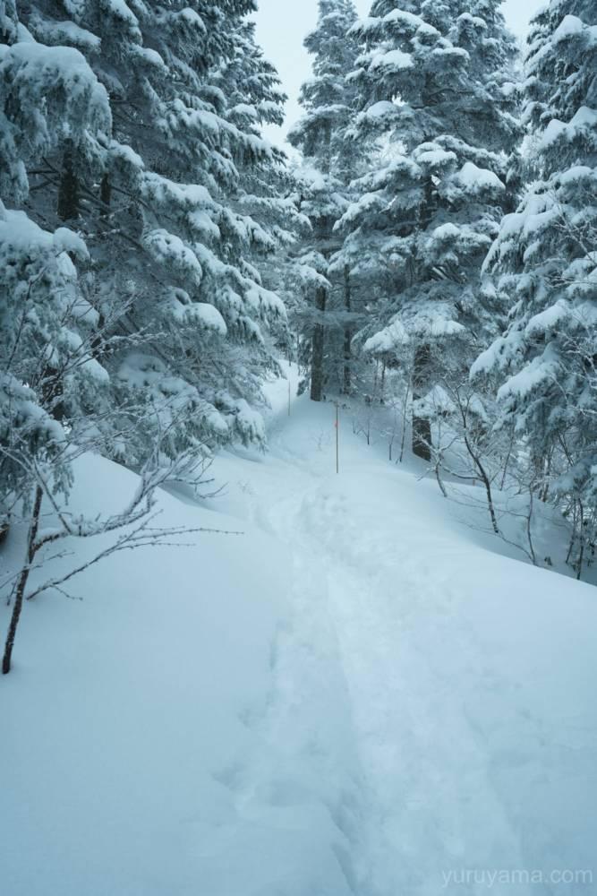 西穂山荘までの道程1