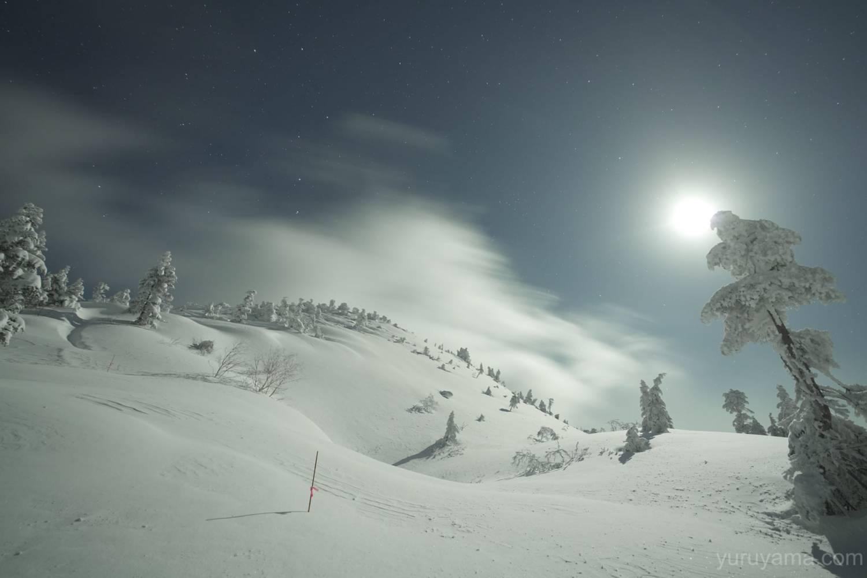 西穂の星空と雪原の画像