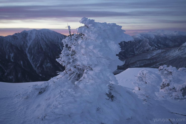 西穂丸山でみた樹氷の画像