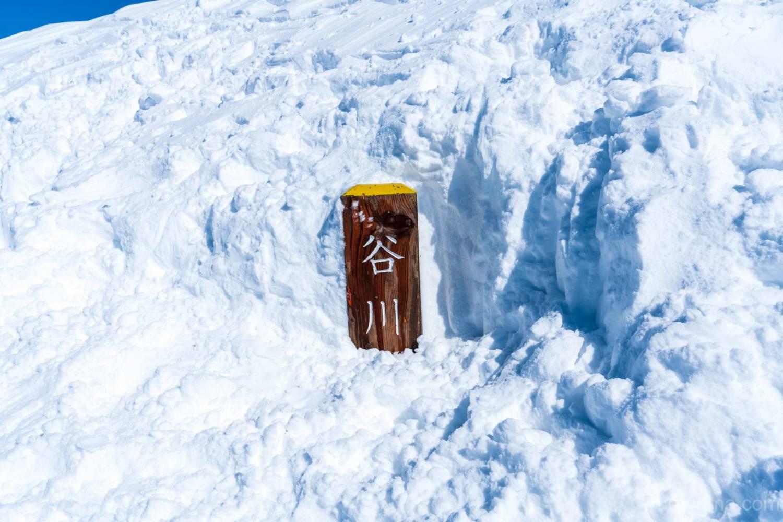 厳冬期の谷川岳トマノ耳の画像