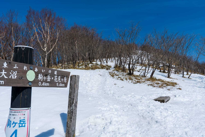 赤城山登山道の画像4