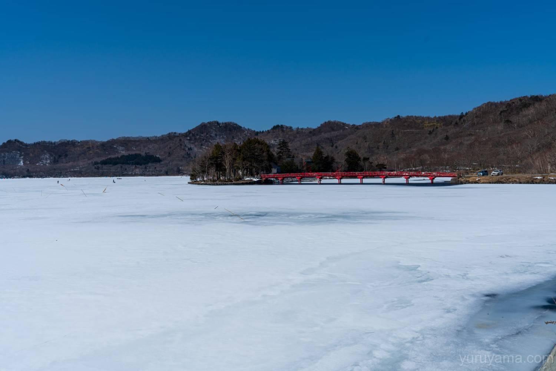 凍った大沼の画像2