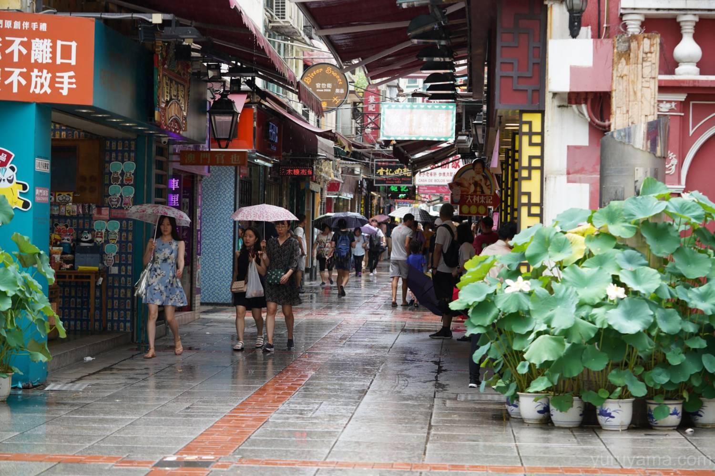タイパ地区の画像