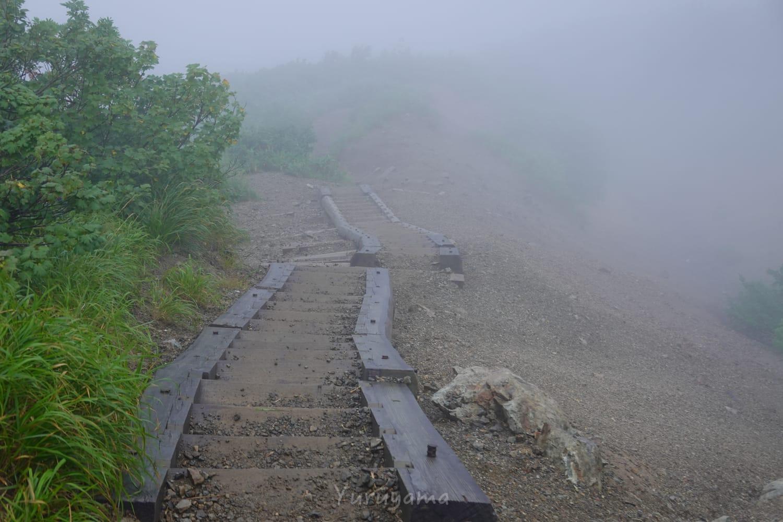 遠見尾根の登山道