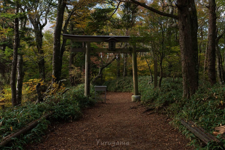 石鎚神社遥拝の鳥居