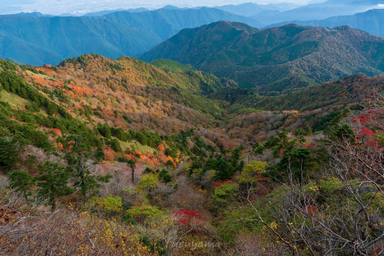 紅葉に染まる石鎚山の山肌