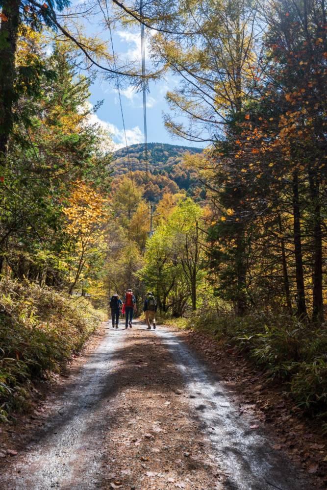 美濃戸山荘周辺の登山道の画像