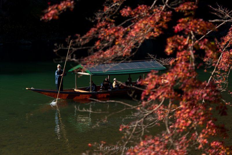 渡し船と京都の紅葉