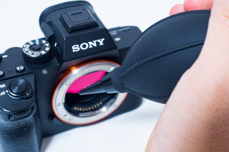 カメラセンサーの埃をスワブで除去する