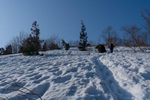 腐れ雪で覆われた荒島岳への登山道