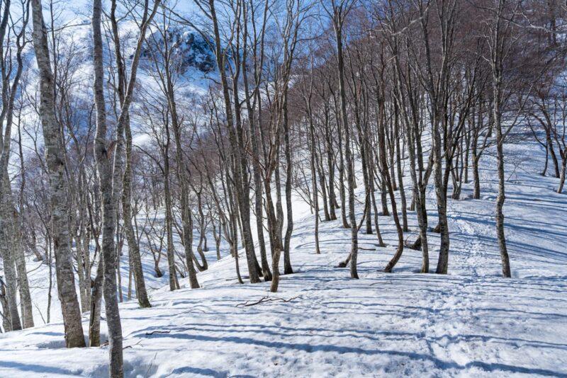 荒島岳と雪の登山道