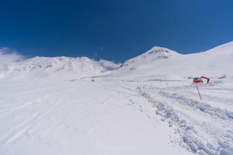 降雪直後の春の立山