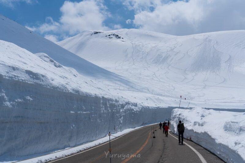 雪の大谷の画像