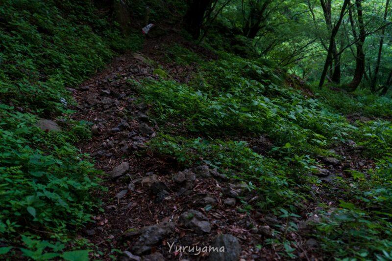 西之川登山道の画像