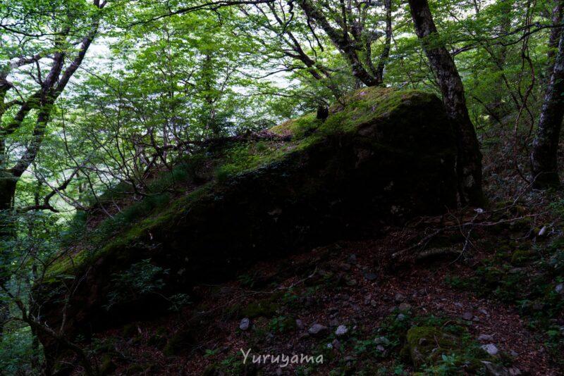 西之川登山道の画像2