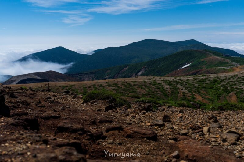 目指す仮田岳への登山道