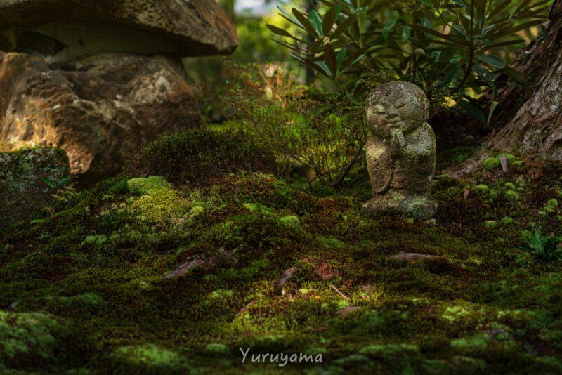 京都大原三千院の地頭1