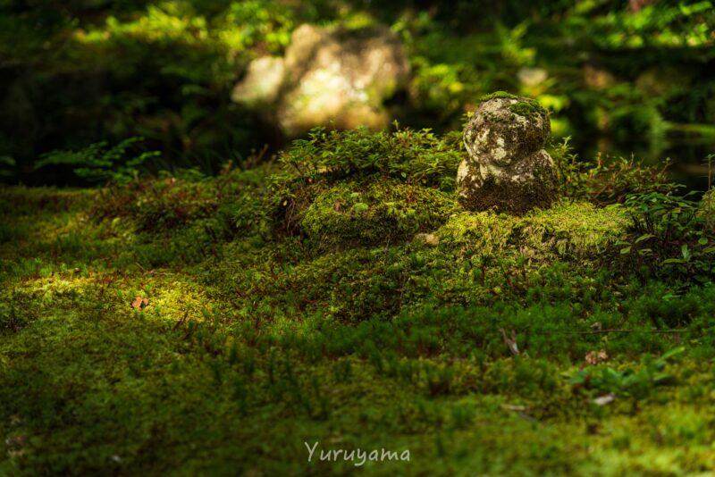 京都大原三千院の地蔵