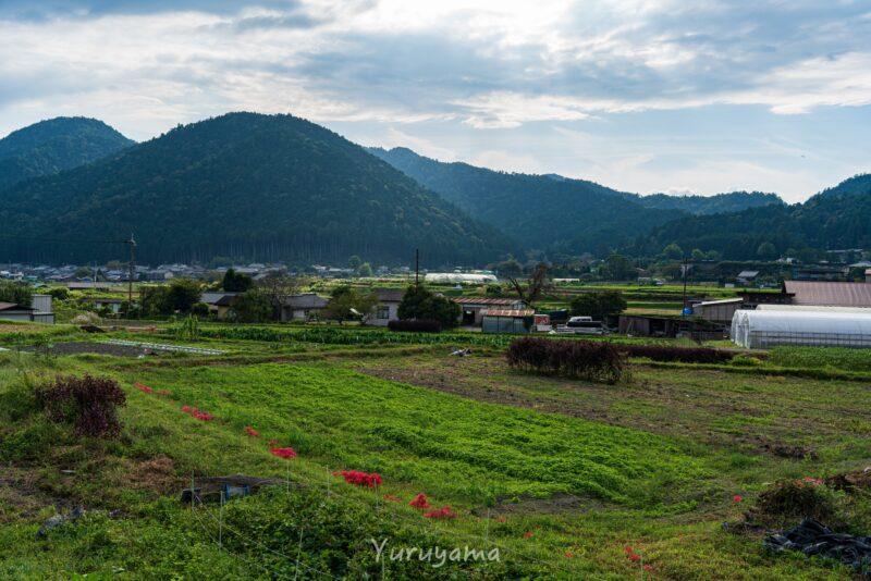 京都大原の風景4