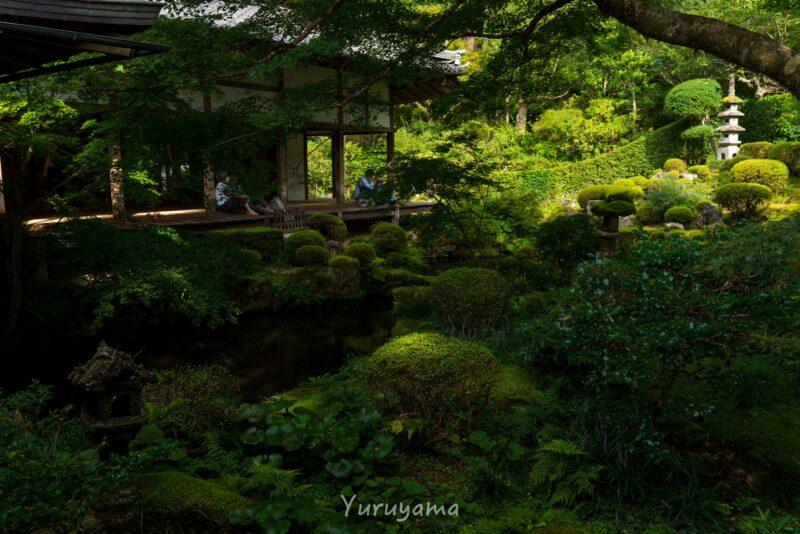 京都大原の三千院の画像